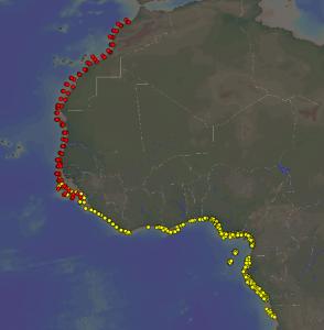 Prøvestasjoner fra Vestafrika med bunndyr i våre samlinger