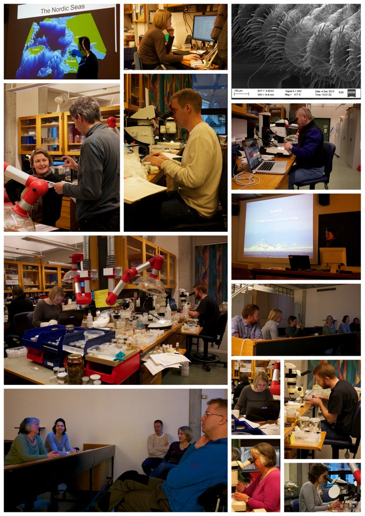 Action på laben. Bilder tatt av Andy Mackie