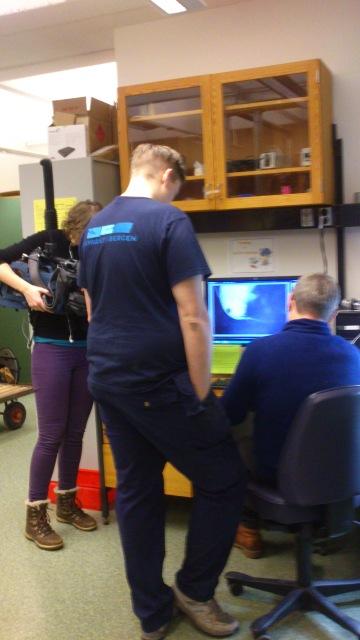 Dyret studeres ved hjelp av kamera med forstørrelse koblet opp til en PC