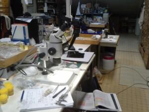 Arbeidsplass