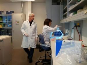 Arbeid på DNAlaben (Foto E. Willassen)