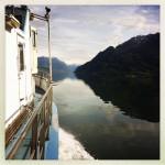 Innover fjorden. Foto: D. Rees