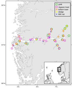 Kart over stasjonene i Sognefjordprosjektet. Ill: David Rees