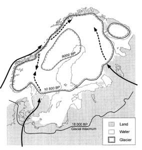 Isens utbredelse og mulige ankomstveier for de forskjellige gruppene av Gammarus lacustris. Fig 7 fra Vainio & Väinölä 2003.