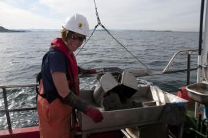 Prøvetakning av bløt havbunn med grab. Foto: AHS Tandberg