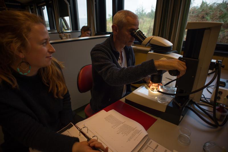 Olli hjelper Torborg med en vanskelig identifikasjon