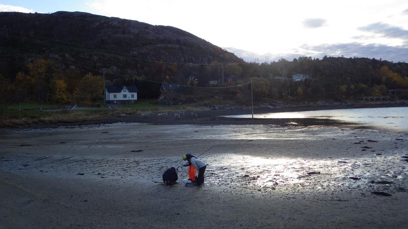 Skattejakt på strand