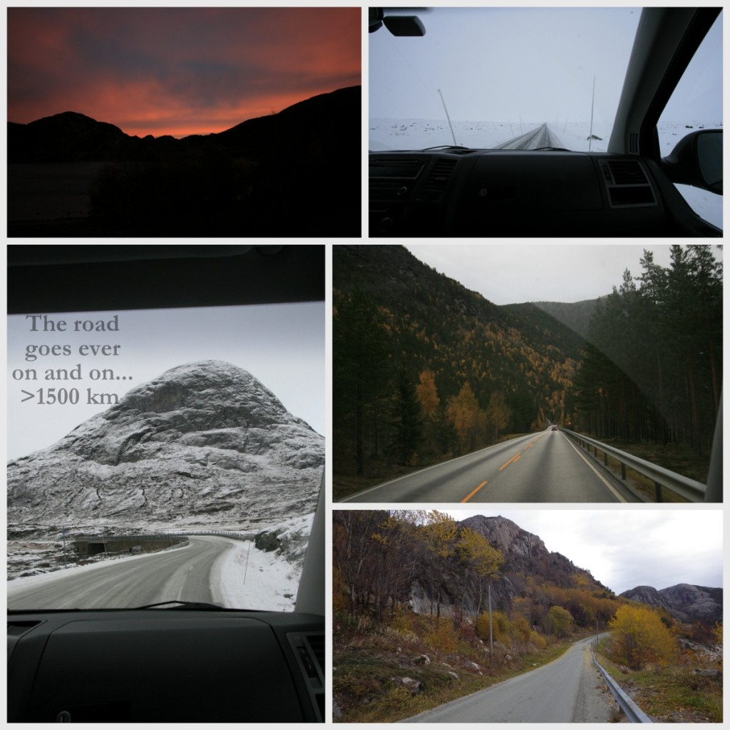 Fin utsikt i fra bilen - vi var stort sett heldige med været.