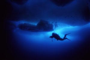 En dykker svømmer under havisen. Foto: Geir Johnsen, NTNU