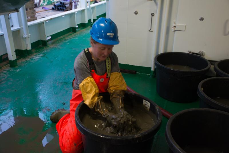 Behandling av en gjørmete prøve. Finner vi amfipoder nedi her? Foto: AHS Tandberg