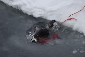 En dykker gjør seg klar til å samle amfipoder under havisen. Foto: AHS Tandberg