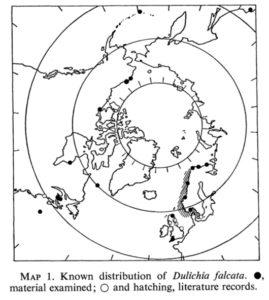 Utbredelse for Dulichia falcata. Kart nr 1 fra Laubitz, 1977.