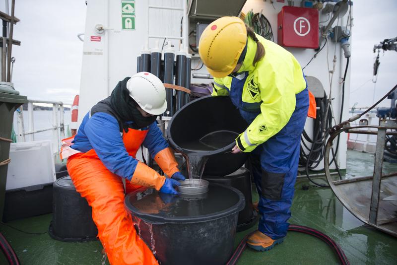 Vasking (dekantering) av prøve. Foto: L. Martell
