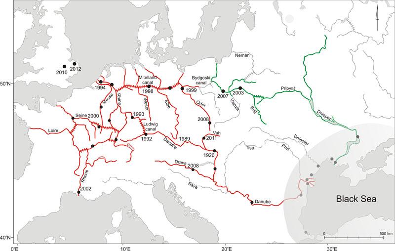 Utbredelse av Dikerogammarus villosus fra det opprinnelige området i Svartehavet (grå skygge) og langs en østlig (grønn) og en vestlig (rød) rute. Kanalene vises med tverrbånd. Årstallene viser første registrerte funn av D. villosus for de forskjellige områdene. Illustrasjon fra Rewicz T, Wattier R, Grabowski M, Rigaud T, Bacela-Spychalska K (2015)