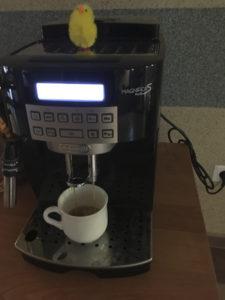 Vår påskepyntete kaffemaskin.