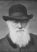 Charles Darwin fotografert i 1880