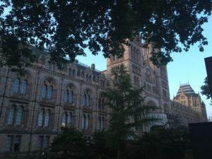 Natural History Museum i London. Også dette museet er under litt omgjøring og oppussing...
